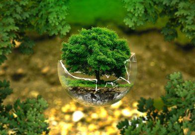 Podcast: Plan de Sostenibilidad Ambiental UTS